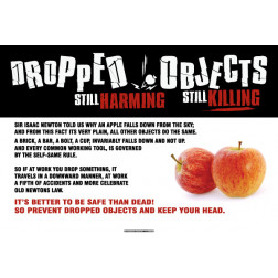 Dropped Objects - Harming / Killing