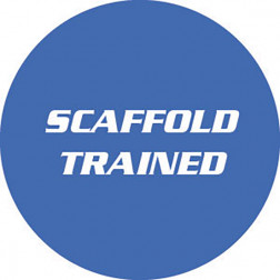 Scaffold / Trained