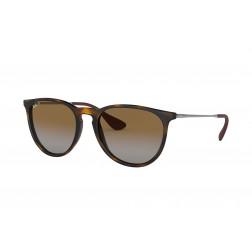 Ray-Ban Polarized Erika Classic Sunglasses